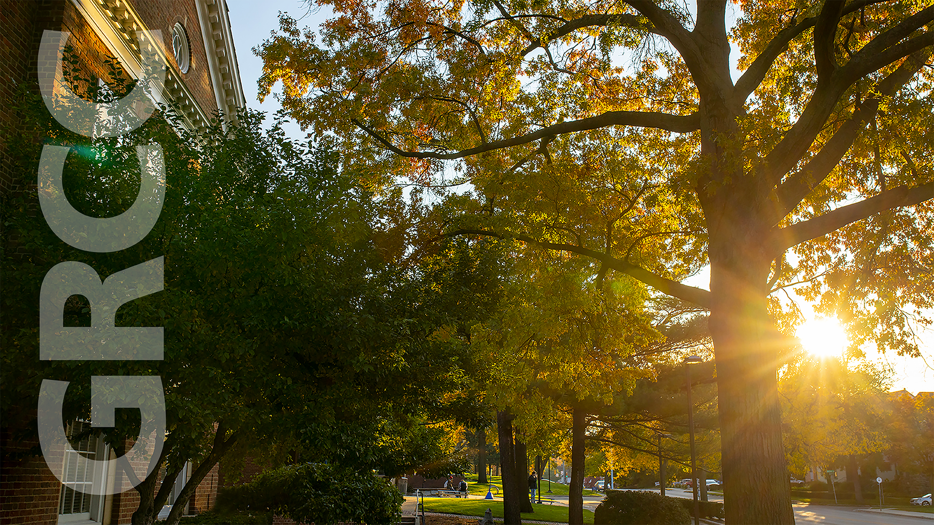Main Campus in fall