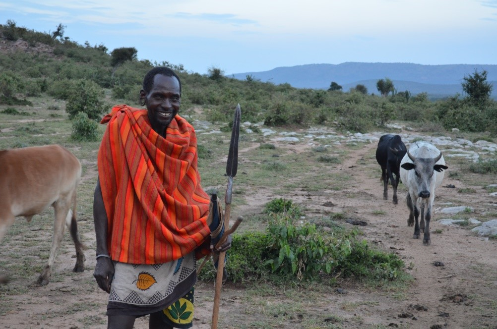 A man with walking stick in bright, cultural garb stands with free-roaming animals