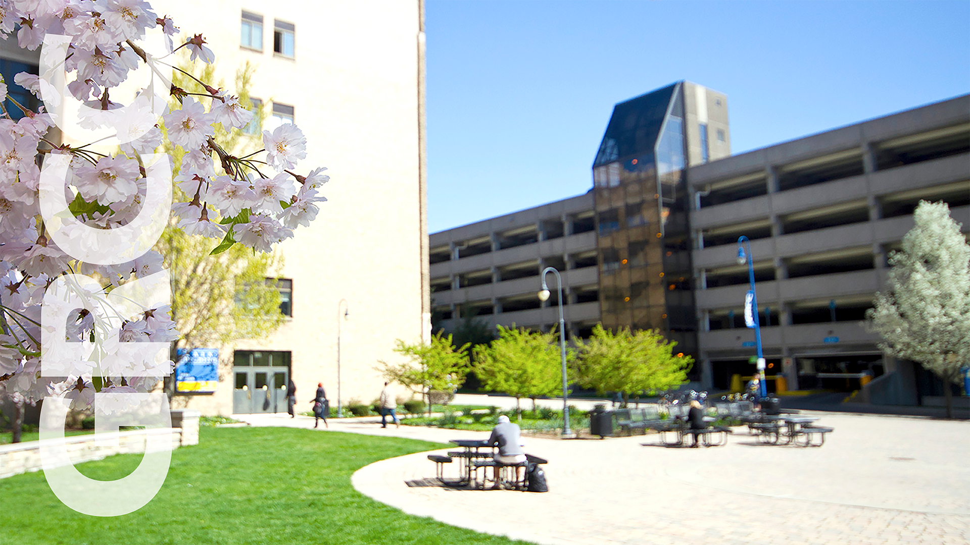 Main Campus in spring