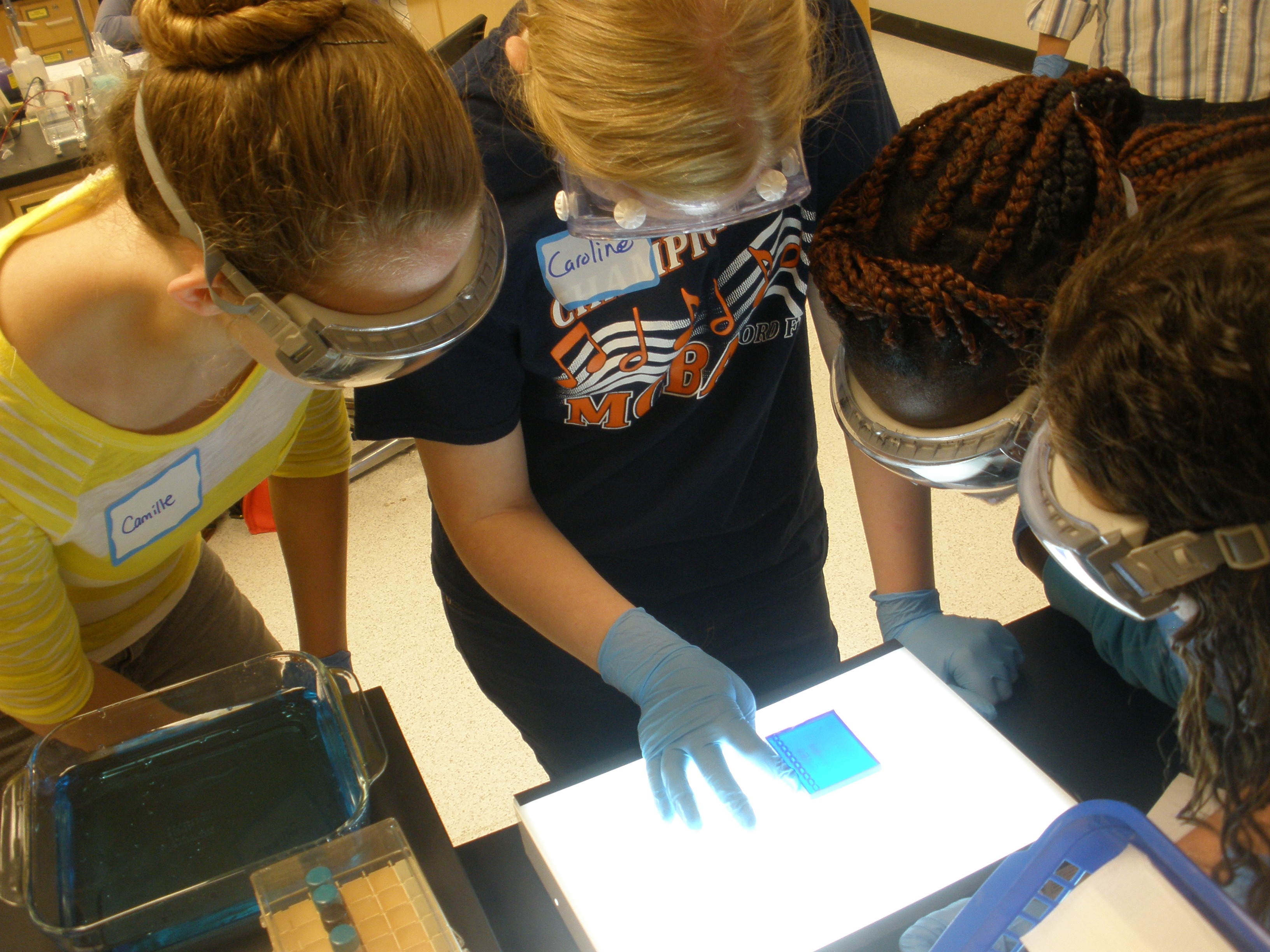 Students standing over an electrophoresis test, studying fingerprint results