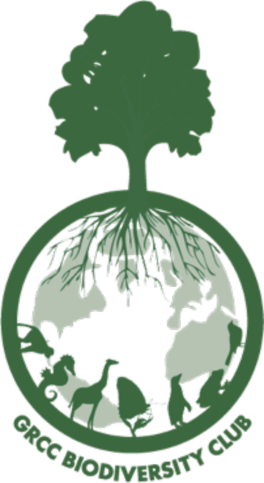 Biodiversity club logo with the roots of a tree forming the silhouette of the earth