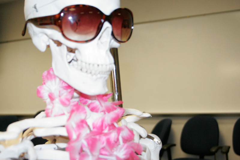 Photo of a skeleton from a biology class wearing sunglasses and a boa