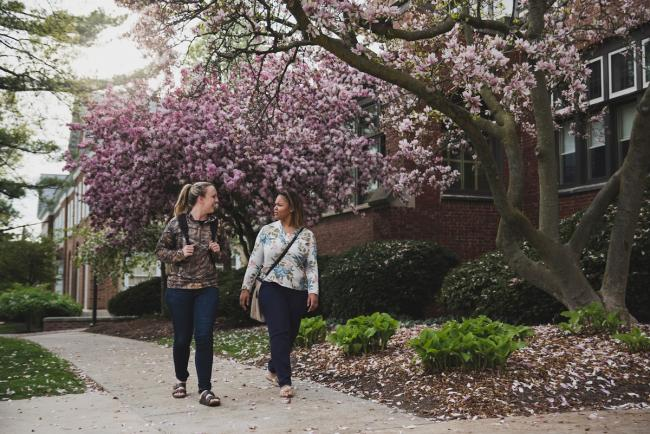 Students walking on the DeVos Campus with flowering trees behind them.