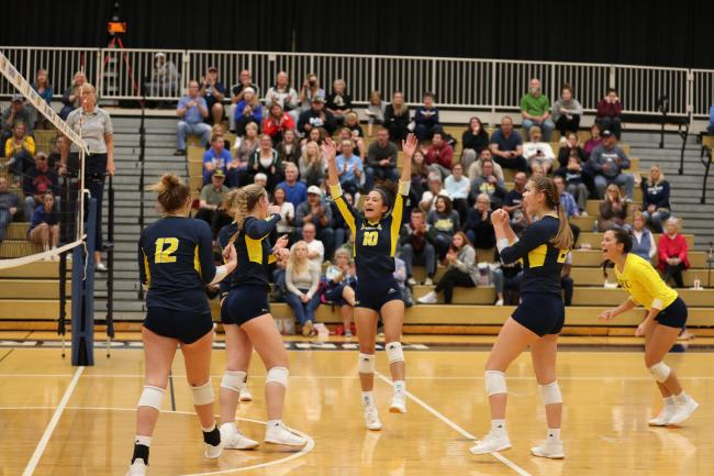 Volleyball players celebrating after scoring a point.